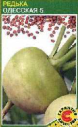 Описание сортов семейство капустных, продажа семян семейства капустных