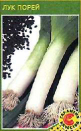 Описание сортов лука, продажа семян лука