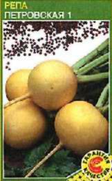 Описание сортов корнеплодов, продажа семян корнеплодов